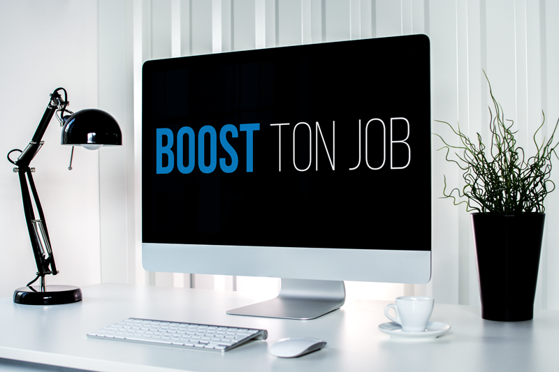 Portfolio Boost Ton Job